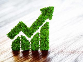 Grüne Anleihen - Fake und Greenwashing - was ist die Wahrheit?