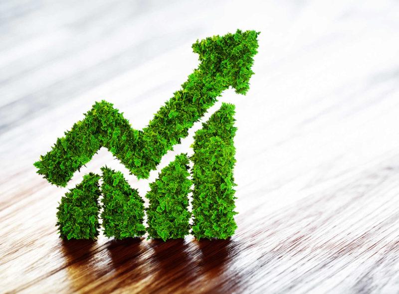 Grüne Anleihen Schematischer Kursverlauf