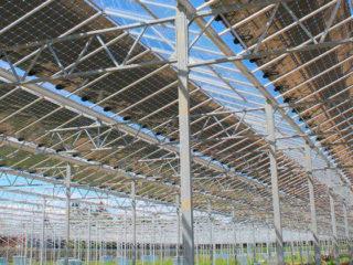 Teil 1: Photovoltaikanlagen gegen den Klimawandel - Heute und in Zukunft