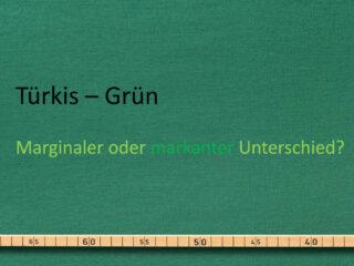 Die Türkis-Grüne Regierung - ausgebremste grüne Klimapolitik?